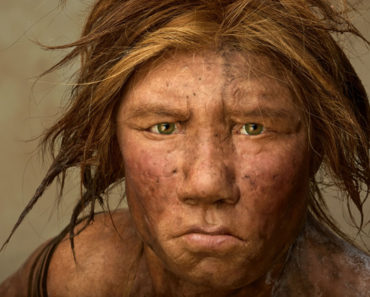 Neanderthal man's face